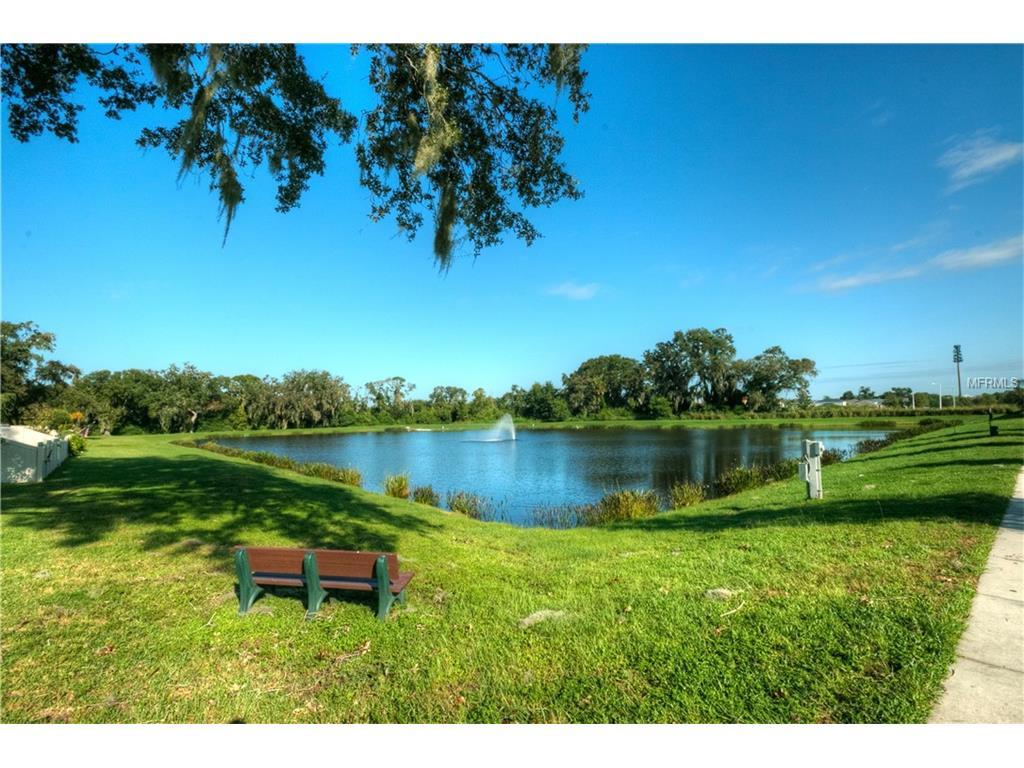 10428 Summer Azure Drive, Riverview, FL 33578