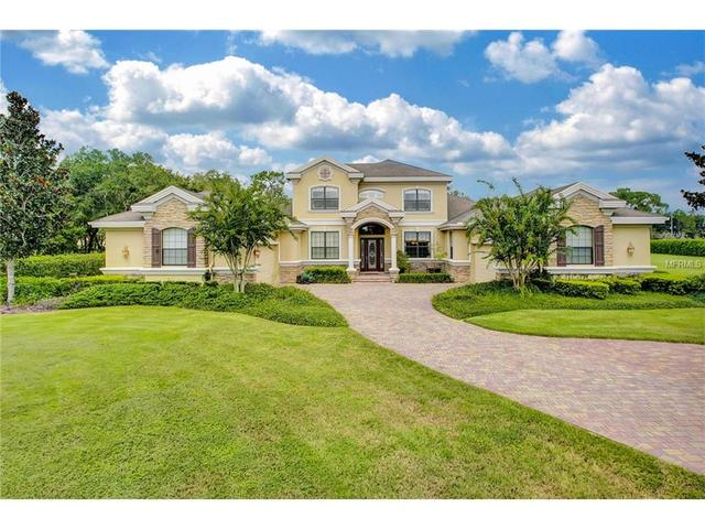 17248 Breeders Cup Dr, Odessa, FL 33556