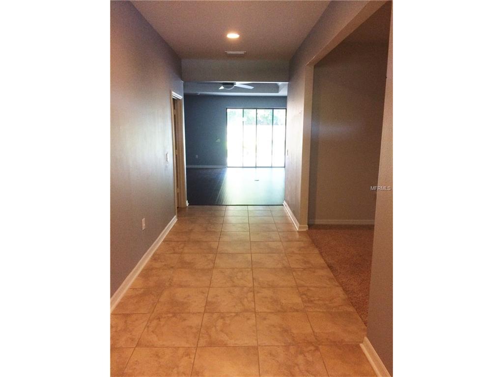 2114 Landside Drive, Valrico, FL 33594