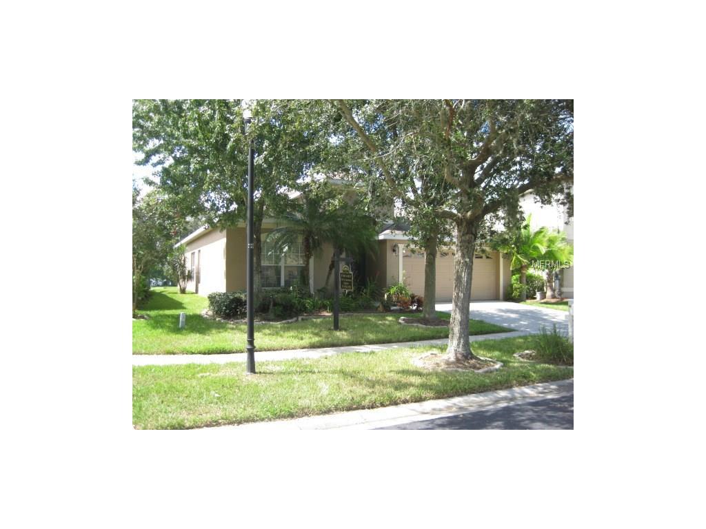 3009 Gem Luster Court, Valrico, FL 33594