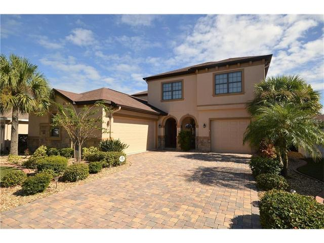 19362 Yellow Clover Dr, Tampa, FL 33647
