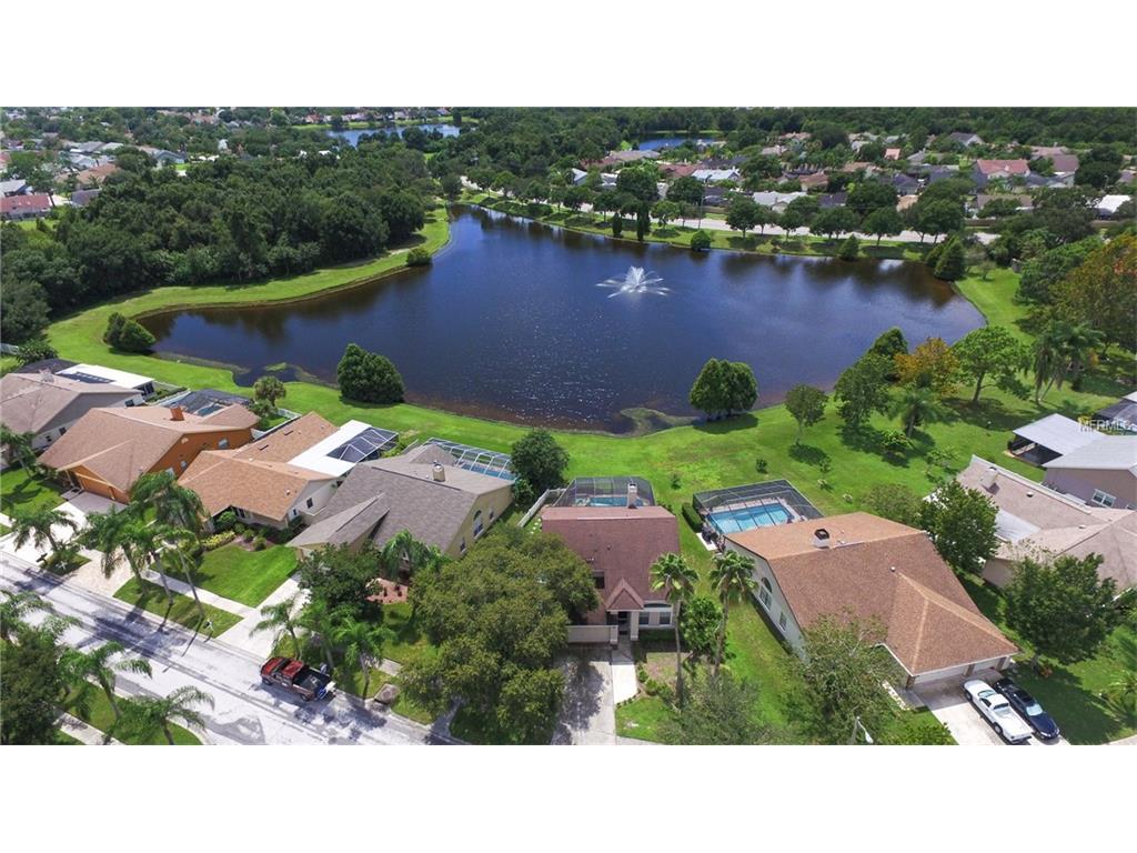 12102 Steppingstone Boulevard, Tampa, FL 33635