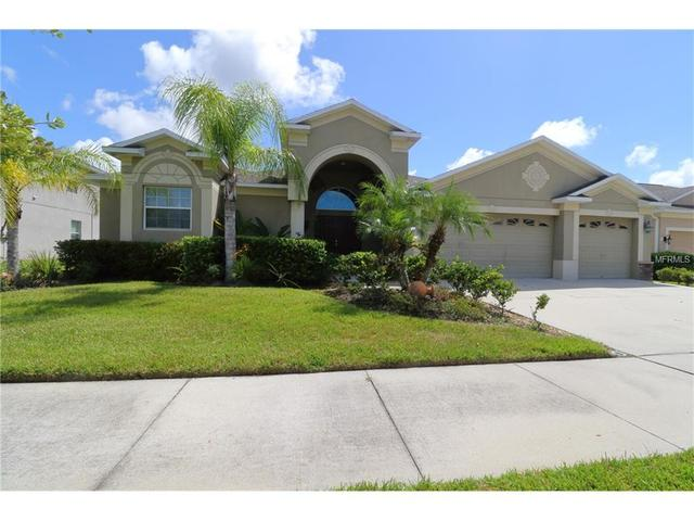 20119 Blue Daze Ave, Tampa, FL 33647