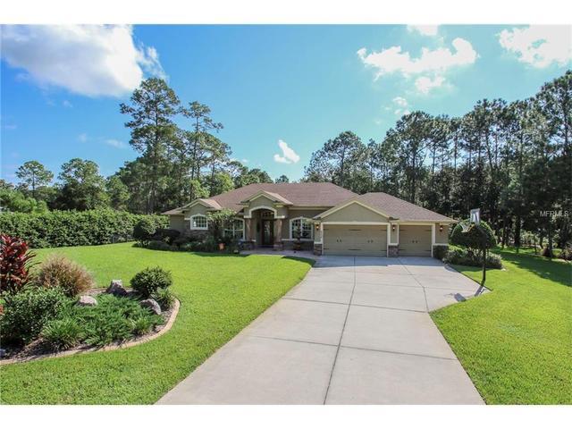 6035 Bridleford Dr, Wesley Chapel, FL 33545