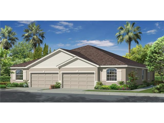 33006 Windelstraw Dr, Wesley Chapel, FL 33545