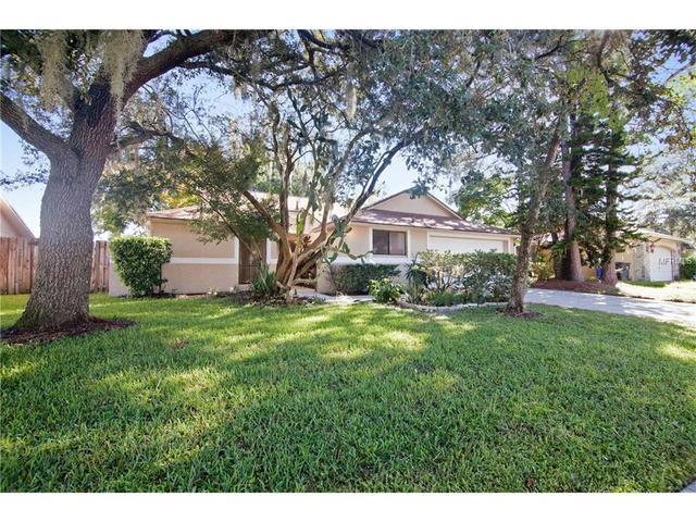 5367 Black Pine Dr, Tampa, FL 33624