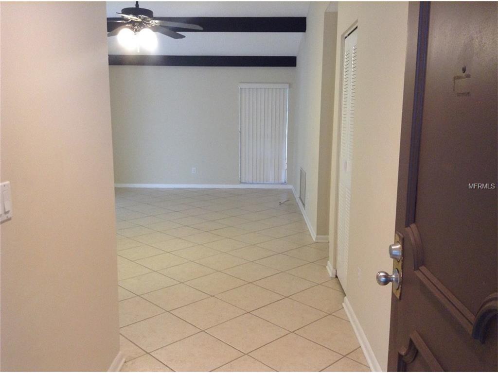 10012 Regal Woods Lane, Tampa, FL 33624