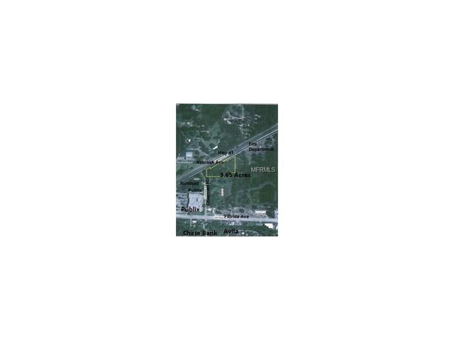 16370 N Nebraska Ave, Lutz, FL 33549