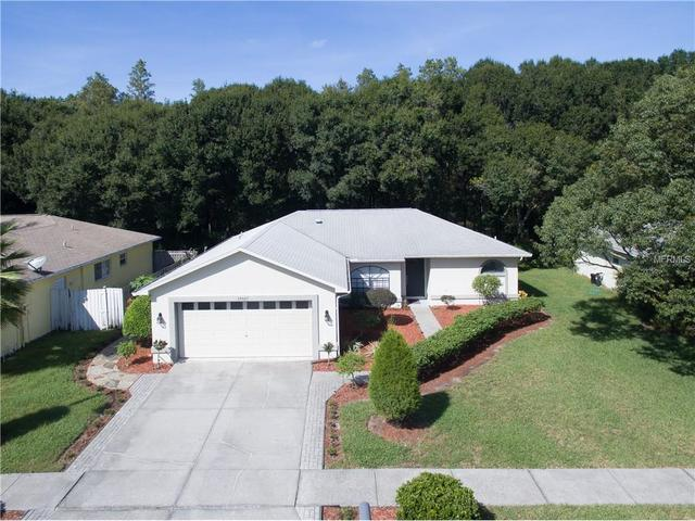 24425 Painter Dr, Land O Lakes, FL 34639