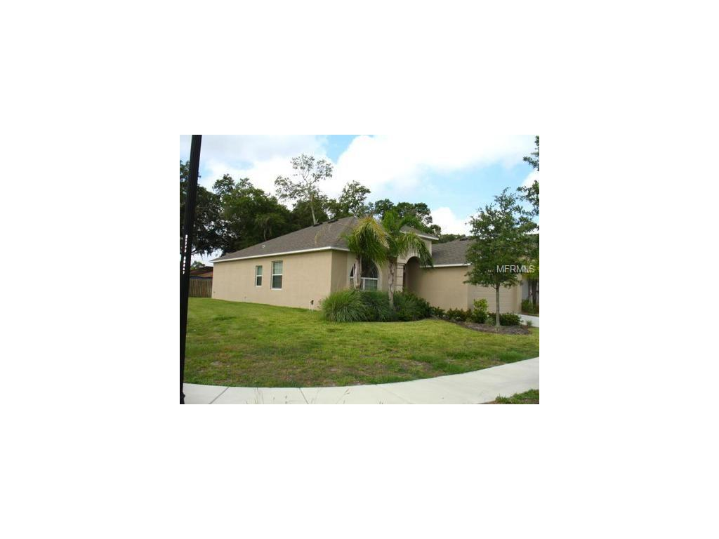 11413 Bamboo Orchid Court, Riverview, FL 33578