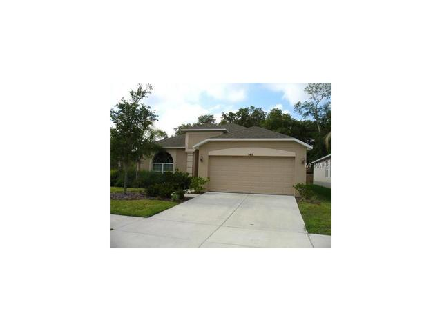 11413 Bamboo Orchid Ct, Riverview, FL 33578