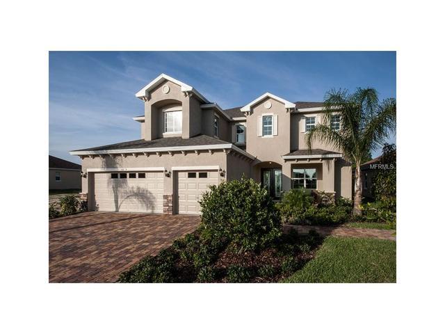 8141 Carlton Ridge Dr, Land O Lakes, FL 34638