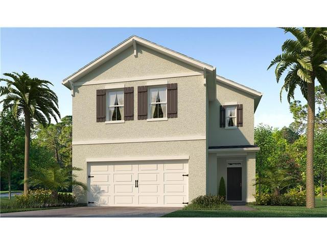 10208 Hawk Storm Ave, Tampa, FL 33610