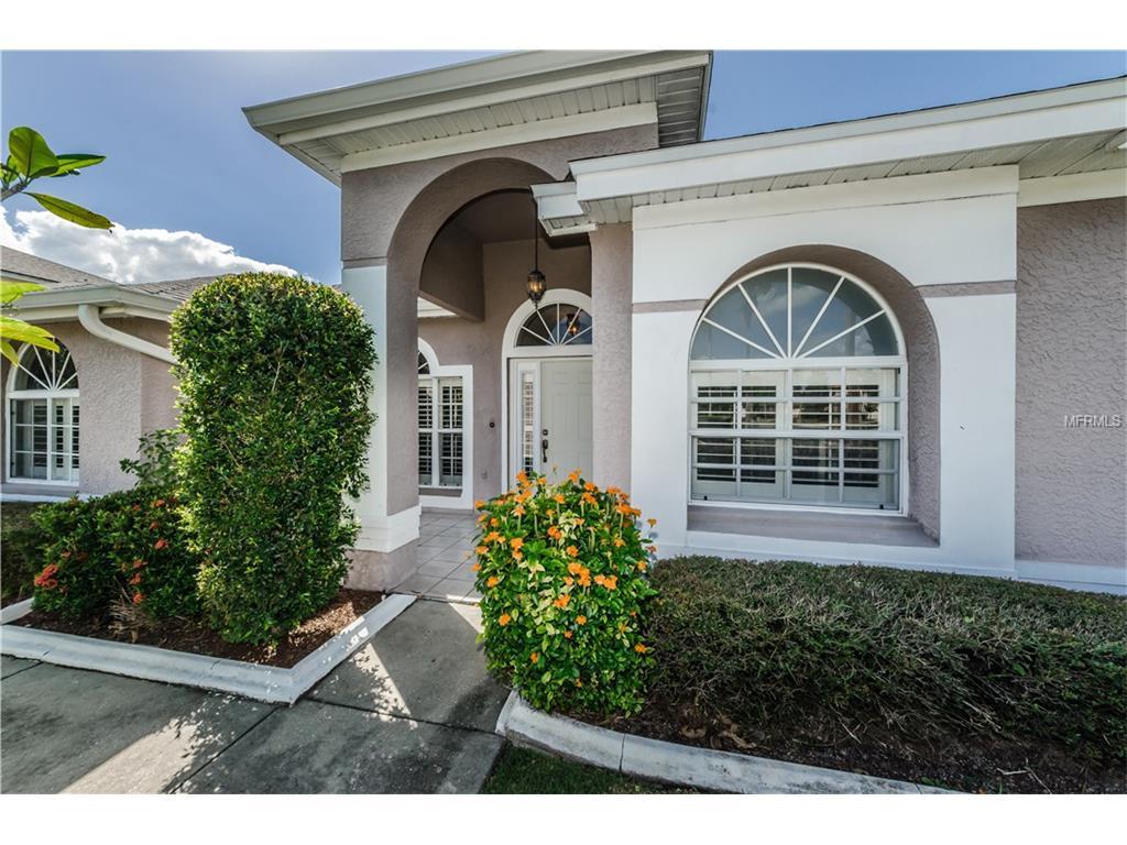 10131 Vista Pointe Drive, Tampa, FL 33635