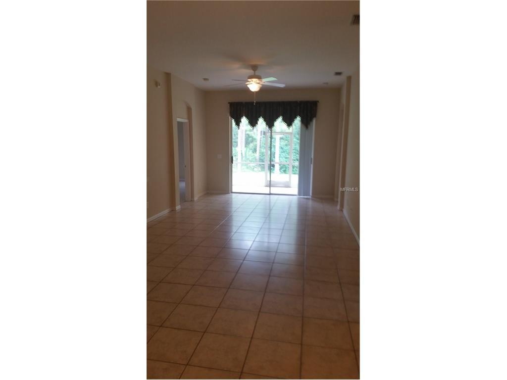14647 Corkwood Drive, Tampa, FL 33626