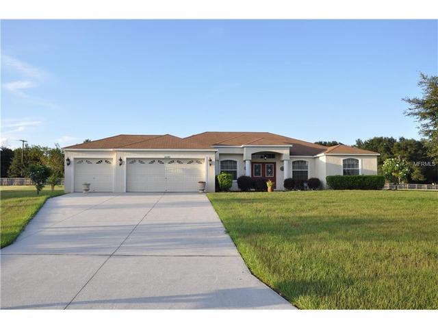 10146 Bloomfield Hills Dr, Seffner, FL 33584