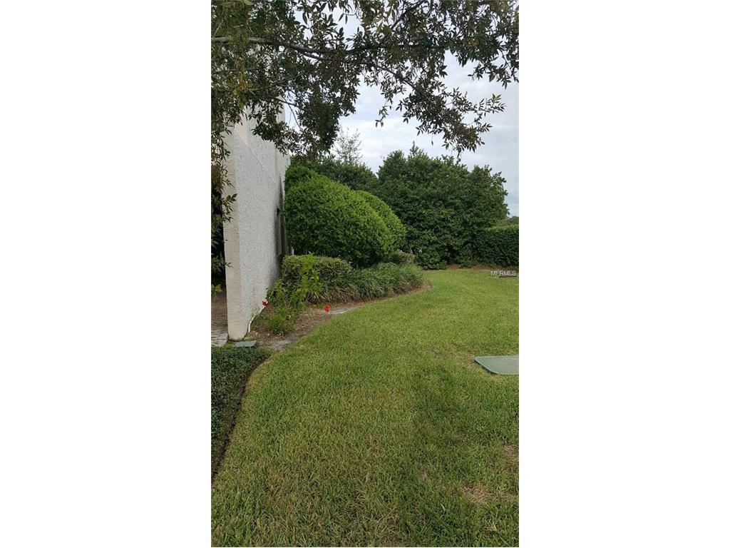 4201 Mill Valley Court, Tampa, FL 33618