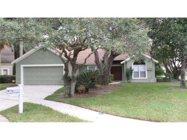 16101 Camelot Ct, Tampa, FL 33647