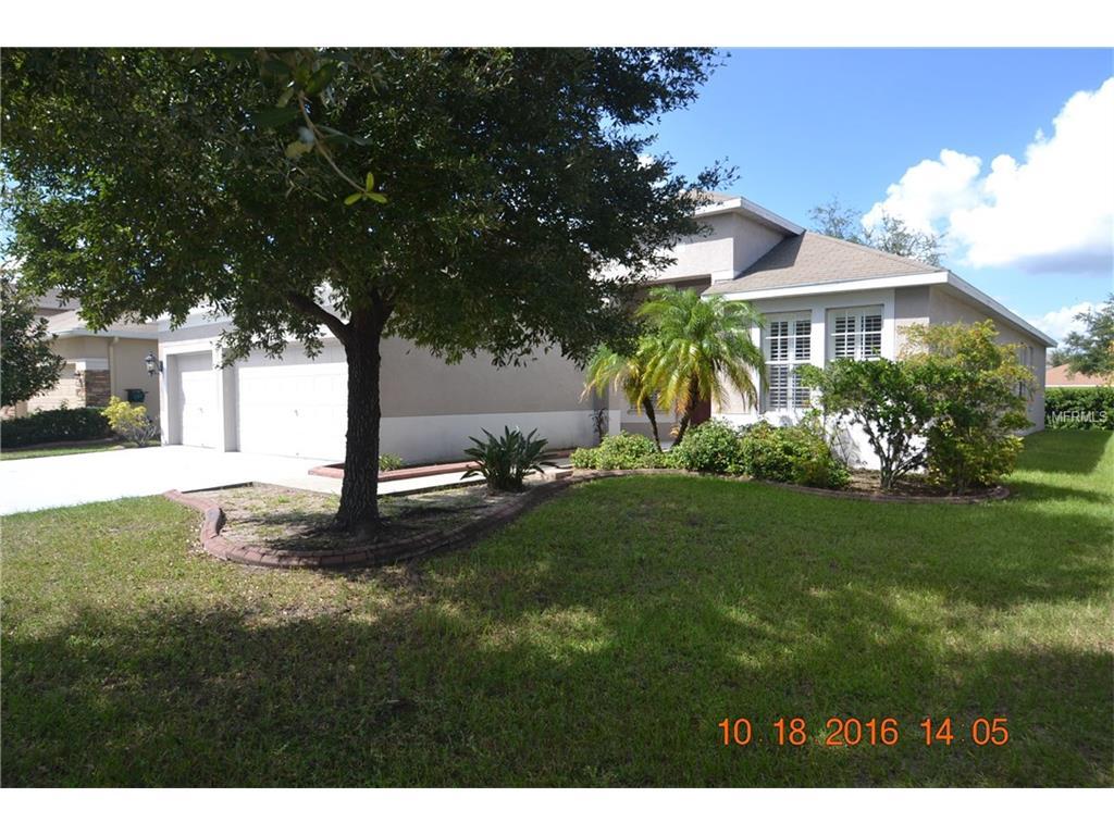 10914 Australian Pine Drive, Riverview, FL 33579
