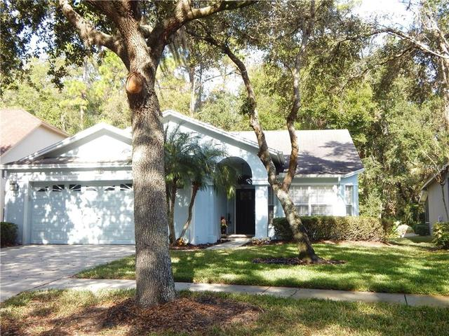 Loans near  Springrose Dr, Tampa FL