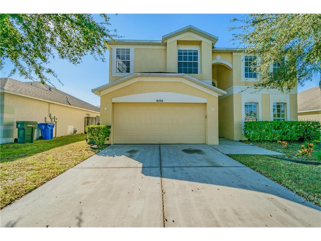 18203 Cypress Haven Drive, Tampa, FL 33647