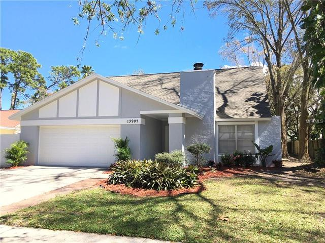 13907 Cherry Creek Dr, Tampa, FL 33618