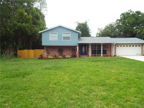 17125 Orangewood Dr, Lutz, FL 33548