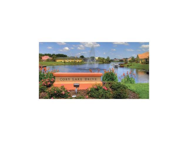 10530 Cory Lake Dr, Tampa, FL 33647