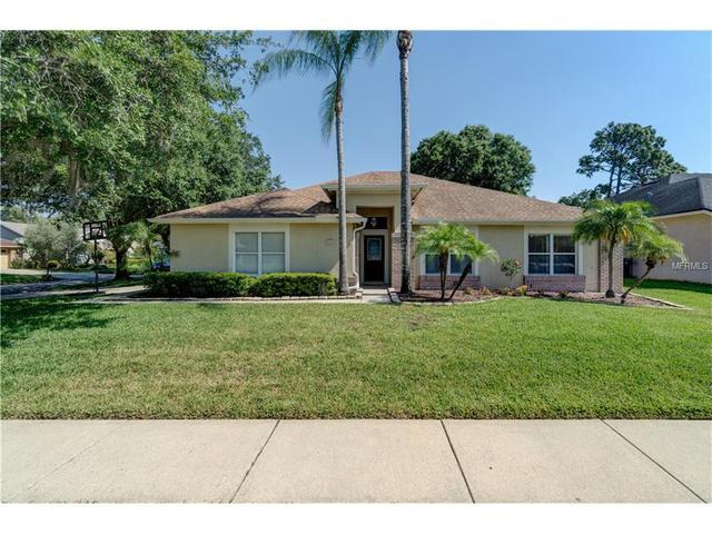 5804 Piney Lane Dr, Tampa, FL 33625