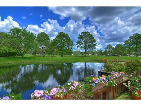 13510 Palmwood Ln #0, Tampa, FL 33618
