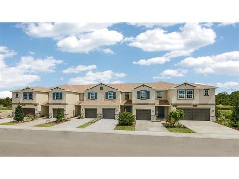 12343 Bayou Flats Ln, Tampa, FL 33635