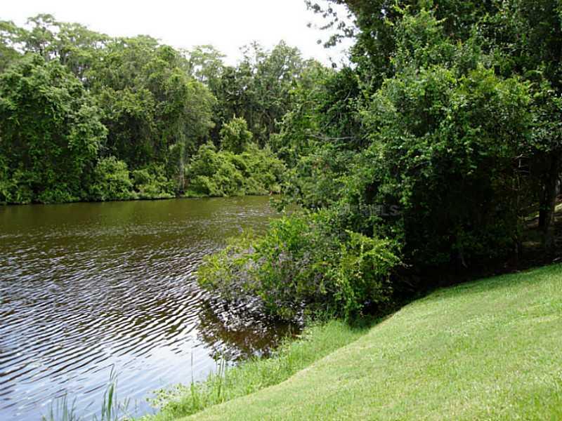 1374 River Oaks Ct, Oldsmar FL 34677