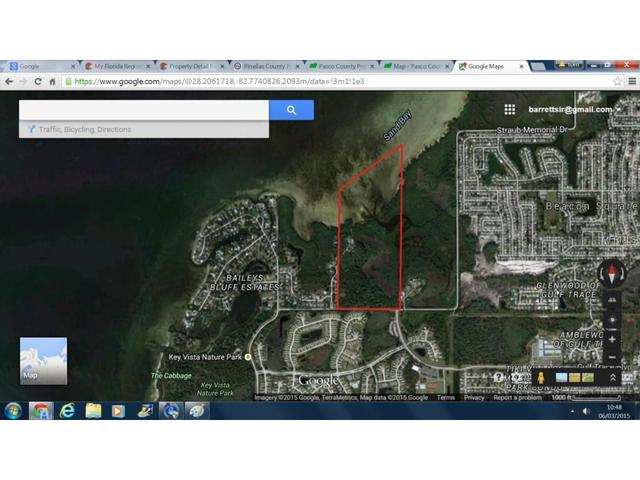 Strauber Memorial Hwy, Holiday, FL 34691