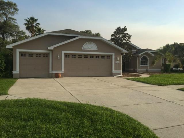 14236 Carlisle Dr, Spring Hill, FL