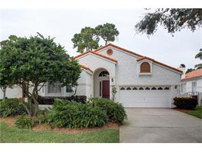 2817 La Concha Dr, Clearwater, FL