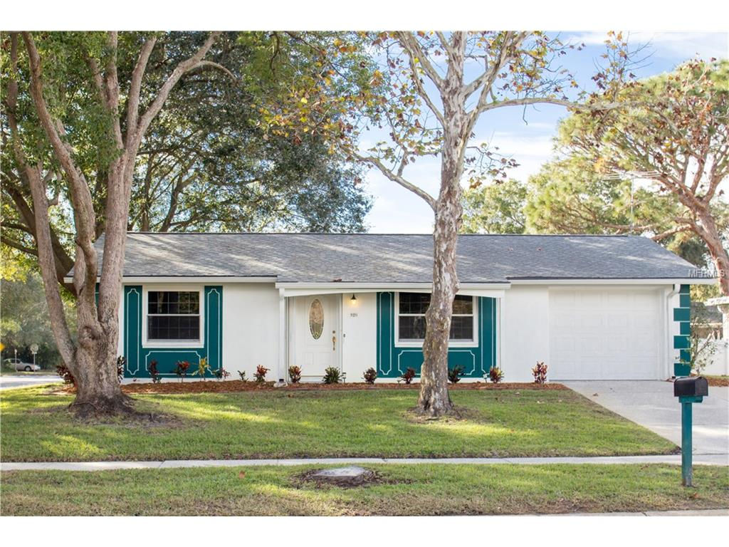 920 Gainesway Dr, Tarpon Springs, FL