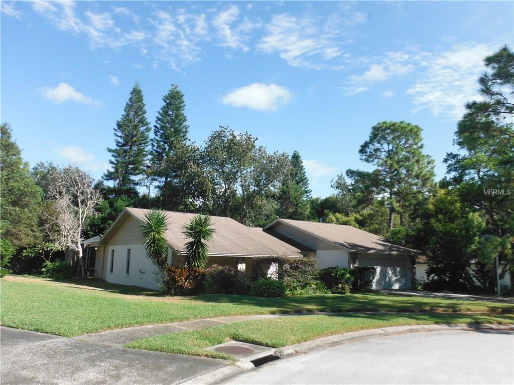 842 Park Ct, Palm Harbor, FL