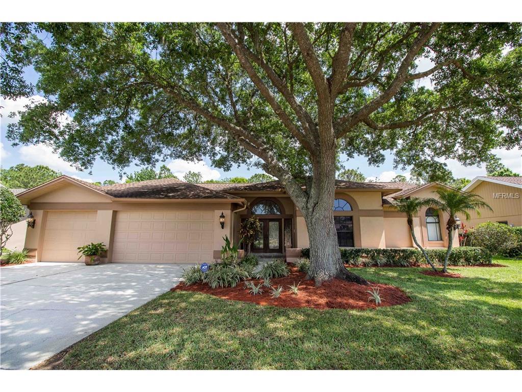 3744 Windber Blvd, Palm Harbor, FL