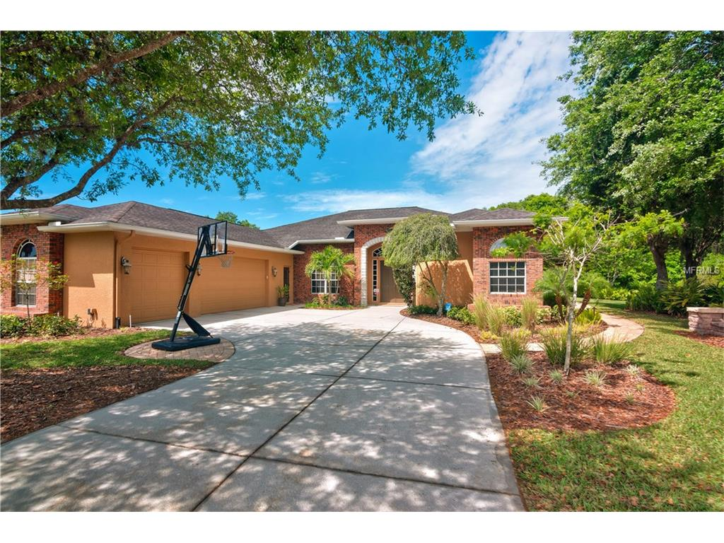 6533 Alcester Dr, New Port Richey, FL