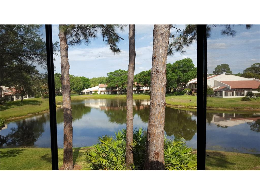 3505 Tarpon Woods Blvd #APT L407, Palm Harbor, FL