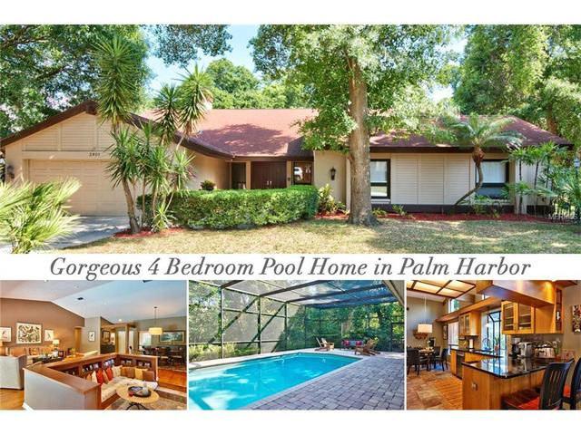 2901 Landmark Way, Palm Harbor FL 34684