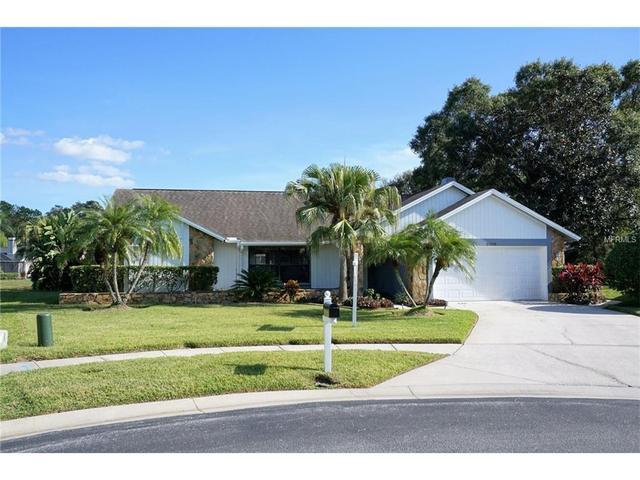 3198 Edgemoor Dr, Palm Harbor, FL 34685