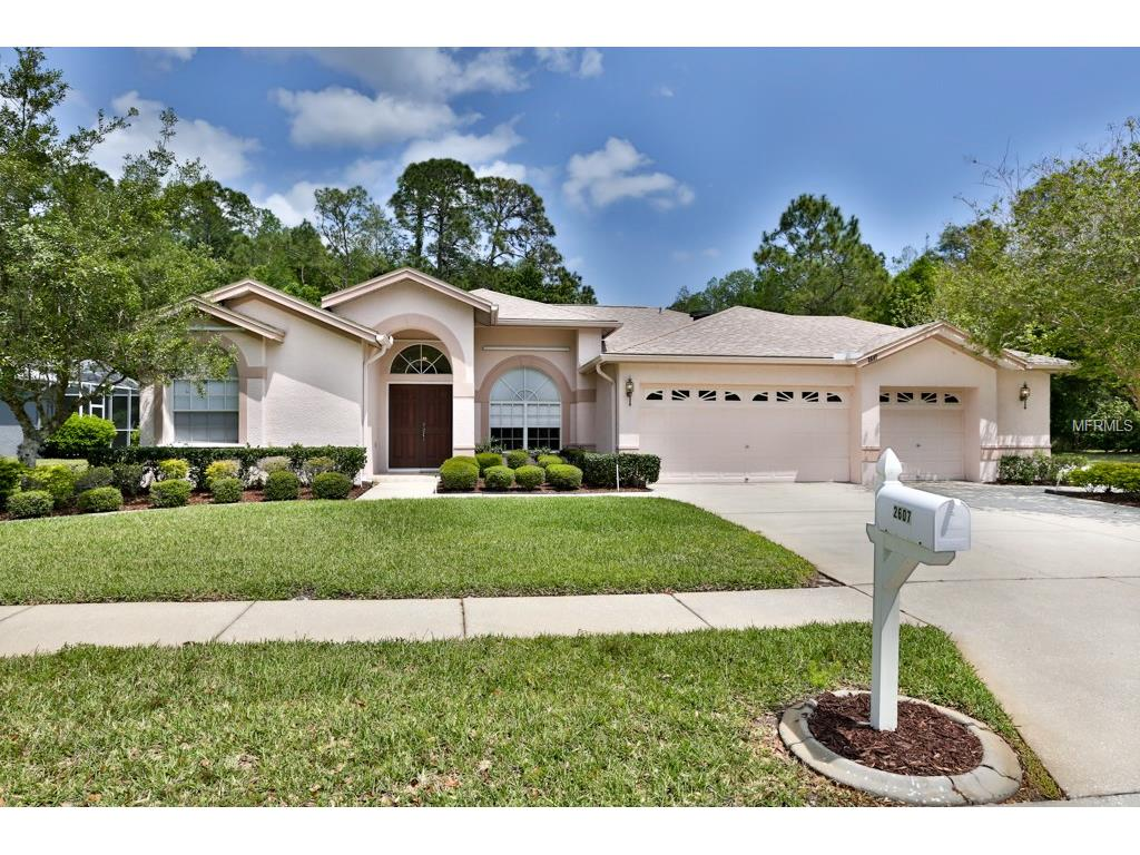 2607 Appaloosa Trl, Palm Harbor, FL