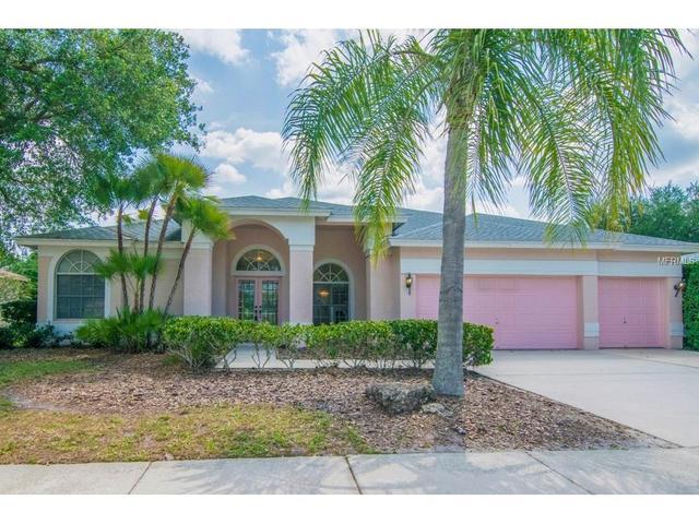 2523 Saddlewood Ln, Palm Harbor, FL