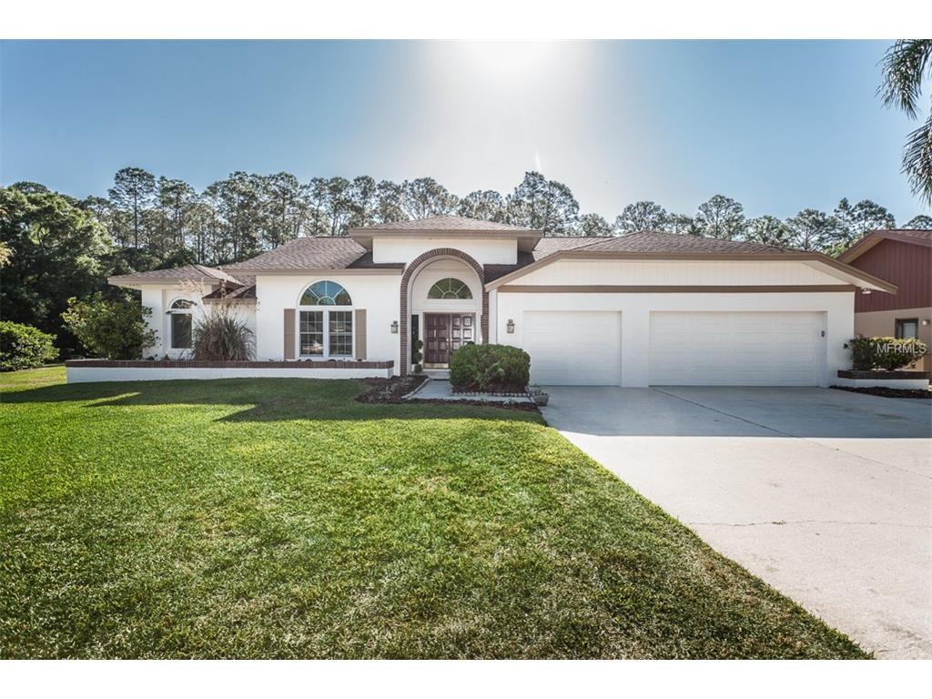 3816 Windber Blvd, Palm Harbor, FL