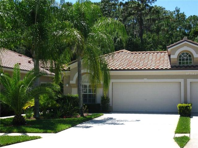 3802 Darston St, Palm Harbor, FL