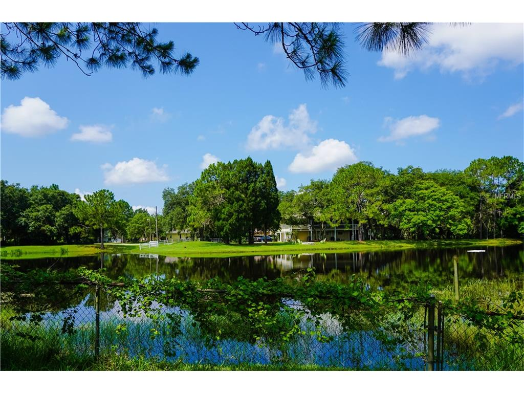 12311 Twin Branch Acres Road, Tampa, FL 33626