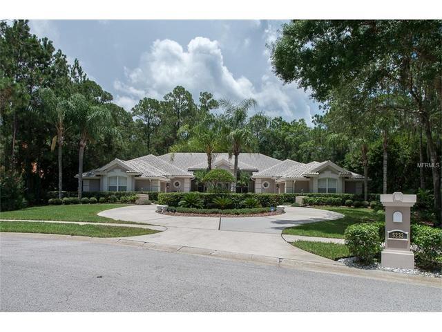 5233 Enclave Dr, Oldsmar, FL 34677