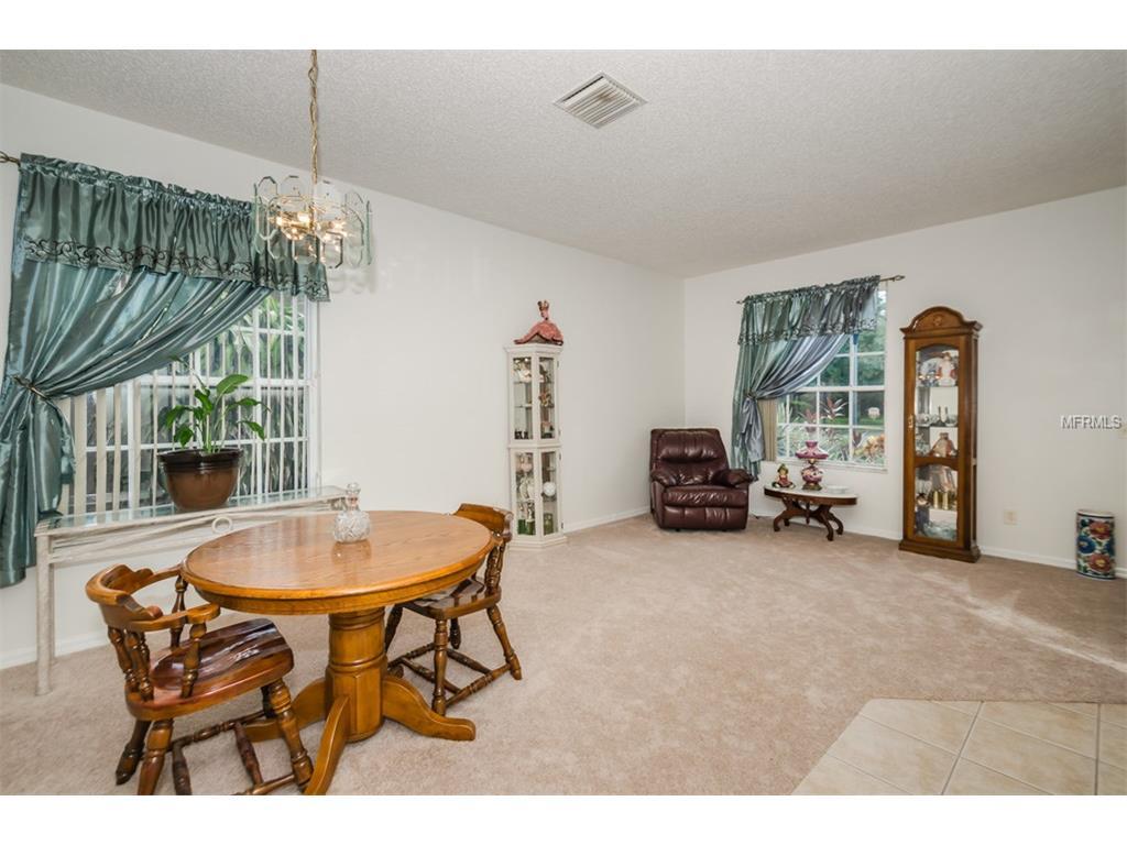 10718 Firebrick Court, Trinity, FL 34655