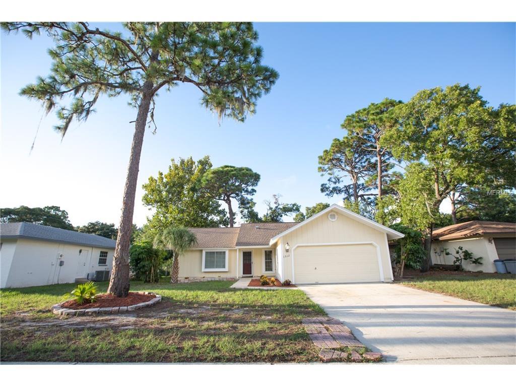 1312 Gulfview Woods Ln, Tarpon Springs, FL 34689